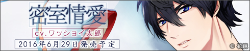 banner_room_490x100